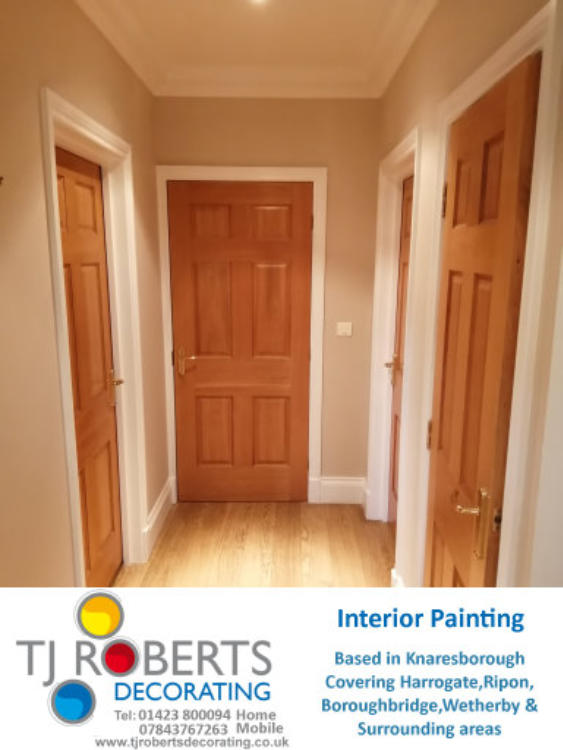 T J Roberts Decorating dust free sanding